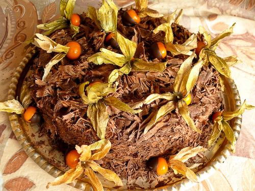 Шоколадова торта с физалис