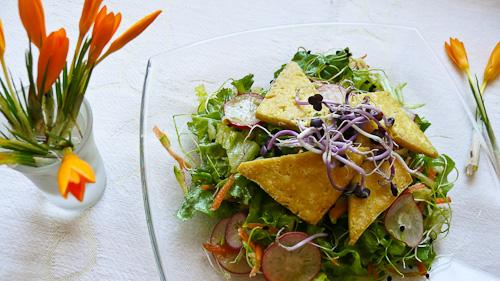 Пролетна салата с кълнове и сирене тофу