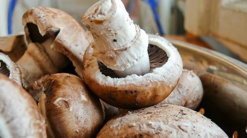 Кралски печурки