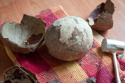 Счупения кокосов орех