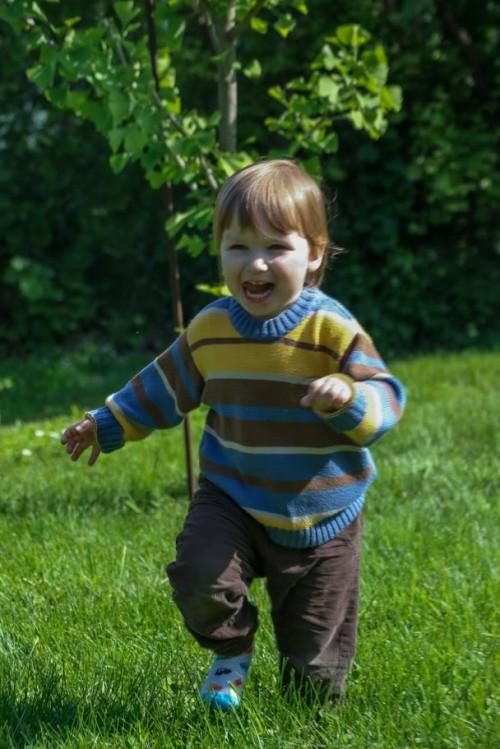 Даниел тича в тревата