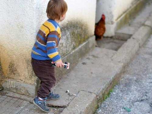 Даниел дебне кокошка