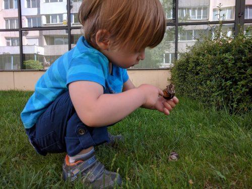 Даниел разглежда охлюви