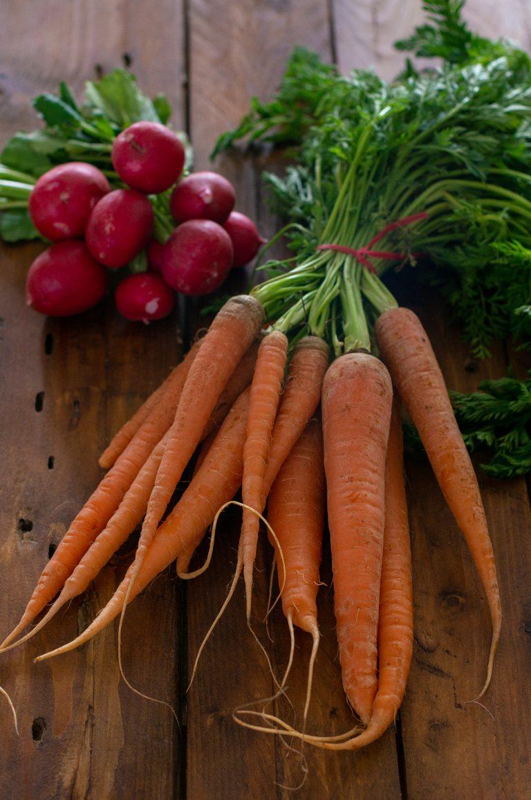 Пролетни моркови и репички