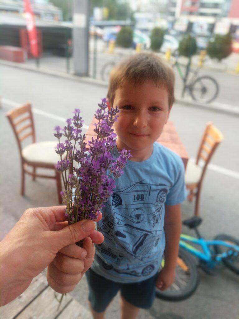 Даниел ми подаря лавандулови цветове